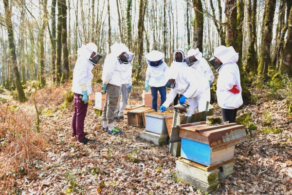 photo ateliers pedagogiques ecole agricole nivot foret agriculture apiculture